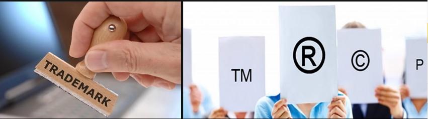 Регистрация ТЗ